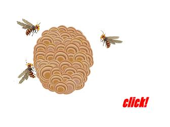刺されると痛いスズメバチ